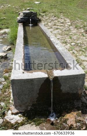 Bath-tub drinking water trough 2 #670633936
