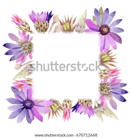 Wildflower immortelle flower frame in a watercolor style. Full name of the plant: immortelle. Aquarelle wild flower for background, texture, wrapper pattern, frame or border. #670712668