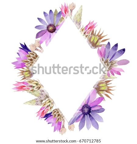Wildflower immortelle flower frame in a watercolor style. Full name of the plant: immortelle. Aquarelle wild flower for background, texture, wrapper pattern, frame or border. #670712785