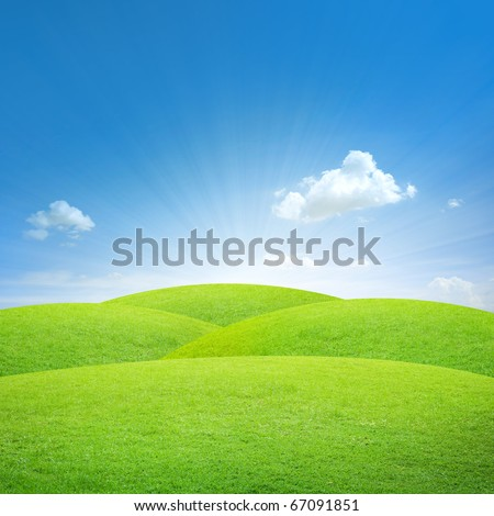 Green field with blue sky #67091851