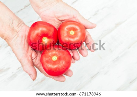 Tomato harvest. Farmers hands with freshly harvested tomatoes. #671178946