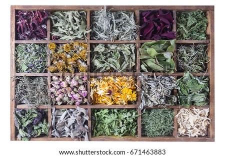 Assortment of dried tea in wooden box #671463883