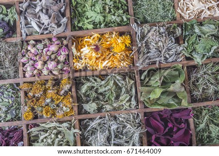 Assortment of dried tea in a wooden case box #671464009