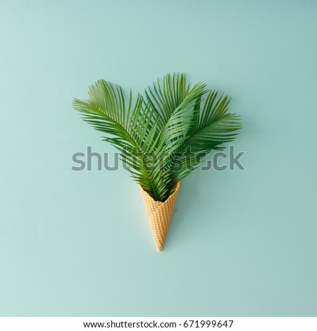 Palm tree leaves in ice cream cone on pastel blue background. Flat lay. Summer tropical concept. #671999647