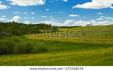 Meadow with field flowers of yellow color and white fluffy clouds in the sky. Summer Landscape #672568534
