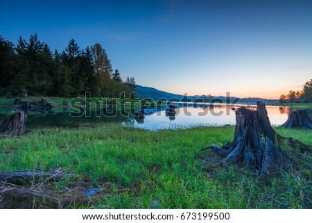 Sundown over forest lake. Alder lake near Mount Rainier #673199500