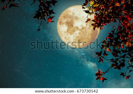 Beautiful autumn fantasy - maple tree in fall season and full moon with milky way star in night skies background. Retro style artwork with vintage color tone