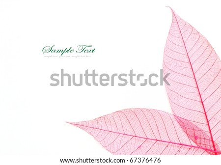 colored Skeleton leafs seamless abstract background #67376476