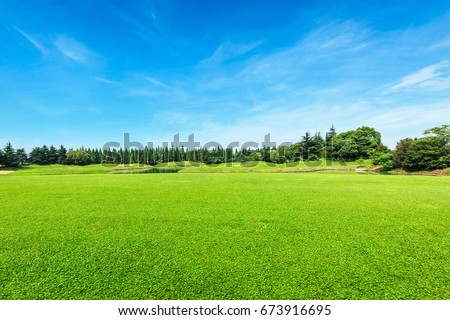 Green field and blue sky #673916695