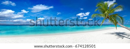 tropical paradise beach with white sand and coco palms travel tourism wide panorama background concept Royalty-Free Stock Photo #674128501