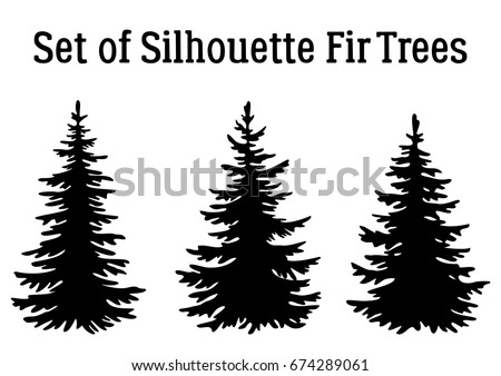Fir Trees, Christmas Holiday Decoration, Black Silhouettes Isolated on White Background. Vector