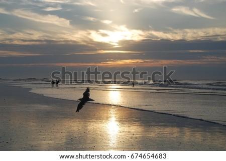 Southern Sunrise #674654683