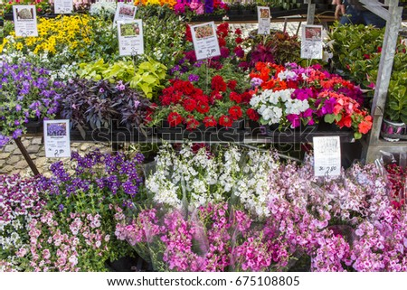 FREIBURG, GERMANY MAY 9, 2017 : Internationally there are hundreds of wholesale flower markets. flower shop in the street, Germany. #675108805