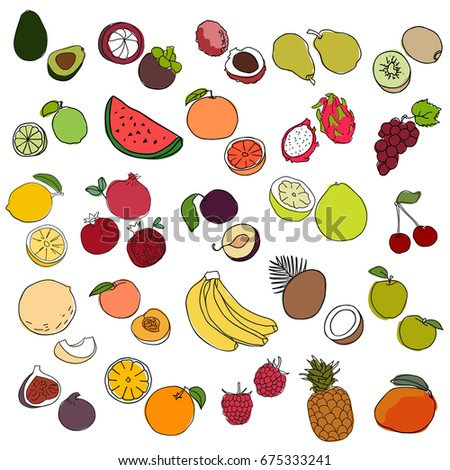 Big set of hand drawn doodle fruits and berries on white background..Sketch style vector drawing. #675333241
