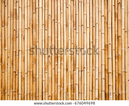 old brown tone bamboo plank fence texture for background #676049698