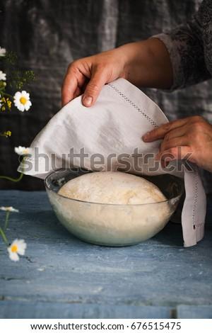 Bread dough rising in a bowl before oven baking dough process flourish #676515475