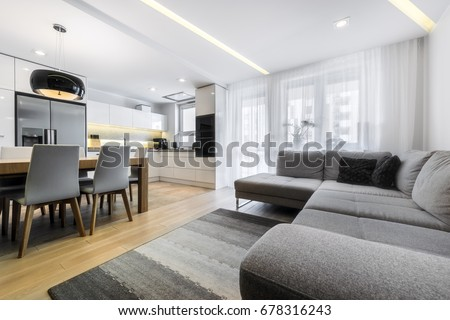 Modern living-room and kitchen in stylish apartment Royalty-Free Stock Photo #678316243
