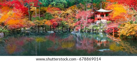 Japan autumn image. Beautiful Japanese garden with a pond and red leaves. Daigo temple in Kyoto.  #678869014
