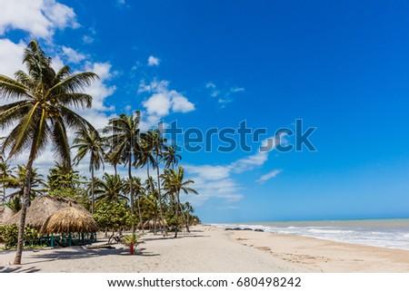 Palomino beach at La Guajira in Colombia South America #680498242