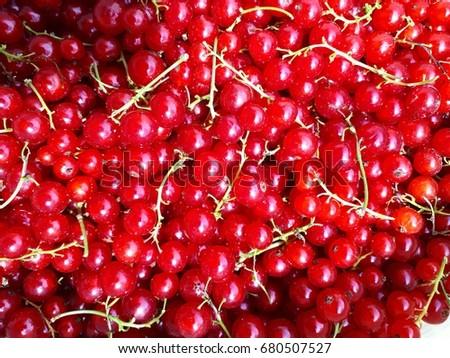 Berry pair #680507527