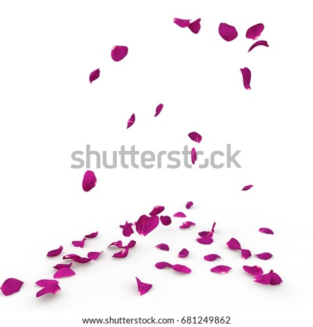 Violet rose petals fall to the floor. Isolated background #681249862