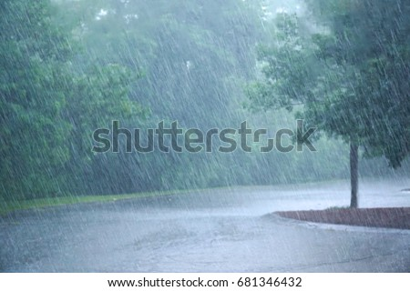 heavy rain and tree in the parking lot Royalty-Free Stock Photo #681346432