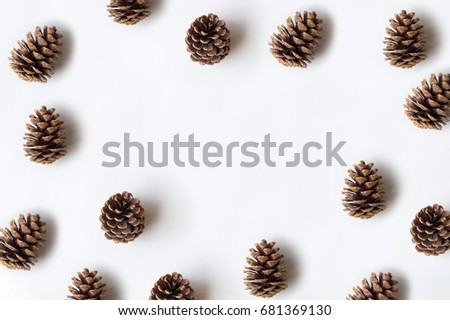 Pinecones isolated on white background, copy space Royalty-Free Stock Photo #681369130
