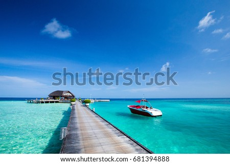 tropical beach in Maldives with few palm trees and blue lagoon #681394888