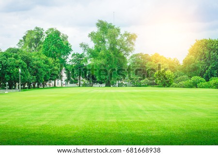 Lawn, garden and trees #681668938