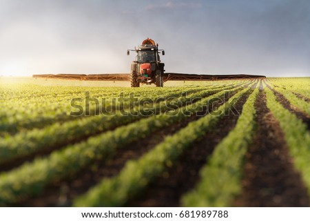 Tractor spraying soybean field at spring  #681989788