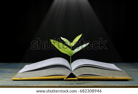 tree grow up from book with light shining as getting knowledge on black background, concept as opening paper will see knowledge of the world, learning by yourself and improve your life everywhere #682308946