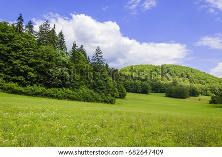 Beautiful summer landscape with meadows, forests and sky #682647409