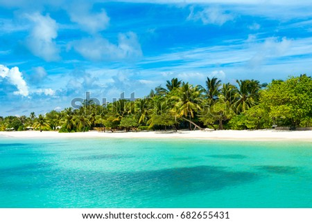 The beautiful landscape of the deserted Indian Ocean sandy beach, shaded by palm trees and tropical plants #682655431