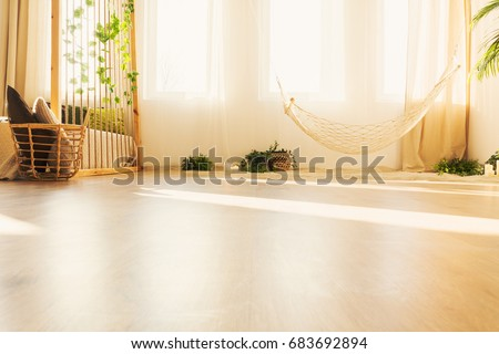 Low angle view of hammock in warm bright room with plants #683692894