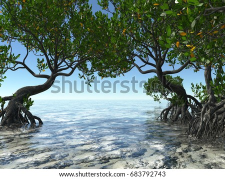 Red mangroves on Florida coast 3d rendering #683792743