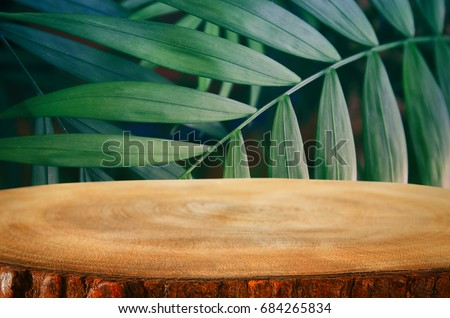 wooden table in front of tropical green floral background. for product display and presentation. #684265834