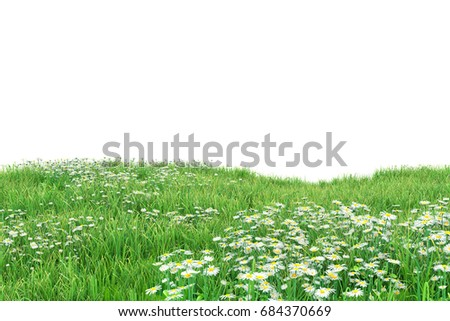 Field of flowers Isolated on white background with clipping path,3d illustration