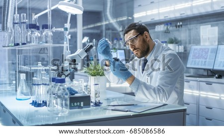 In a Modern Laboratory Research Scientist Conducts Experiments by Synthesising Compounds with use of Dropper and Plant in a Test Tube. Royalty-Free Stock Photo #685086586