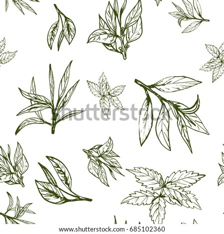 seamless pattern green tea, hand-drawn leaves and branches of tea #685102360
