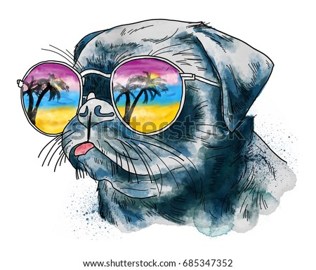 Beautiful watercolor illustration of bulldog in sunglasses isolated on white background. Could be used for postcards/ prints/ t-shirts etc.