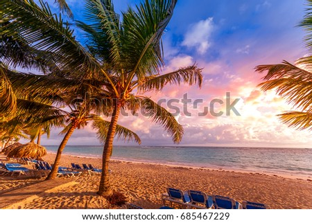 Tropical sky and palm trees by the ocean. Vintage retro colors post processed. Vacation, Caribbean, tropical, travel, and destination wedding concept #685467229