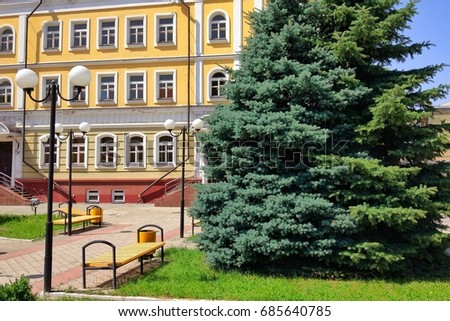 Two spruce trees of different colors grow against a beautiful yellow building #685640785
