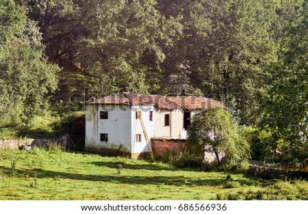 Abandoned house in Cangas de Onis, Asturias, Spain. Ruin invaded by greenery. #686566936
