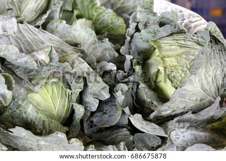 cabbages on the market #686675878