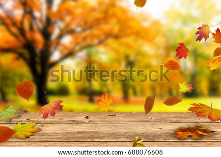 wooden table in front of a colorful autumn landscape #688076608
