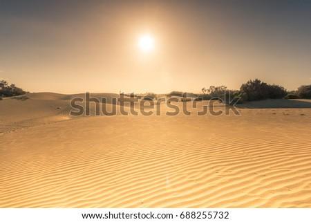 Maspalomas small desert #688255732