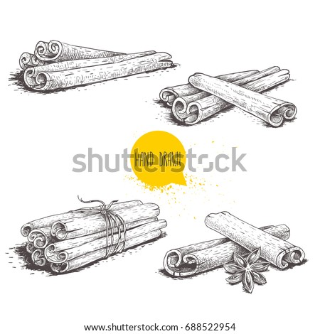 Hand drawn sketch style cinnamon sticks set. Tied with twine, with star anise and bunches. Isolated on white background. Vector healthy spice collection. Royalty-Free Stock Photo #688522954