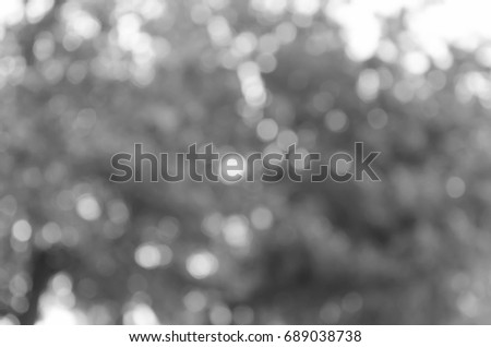 gray abstract light background #689038738