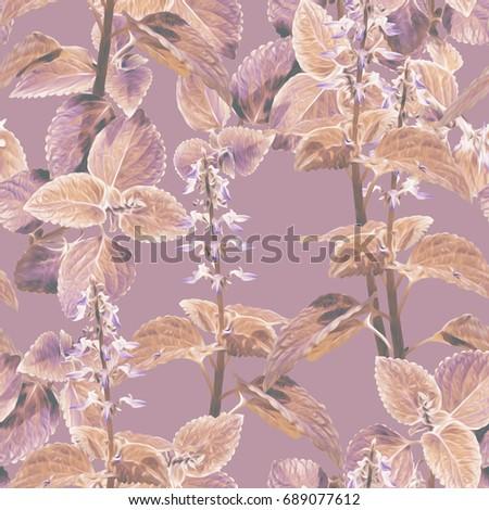 Coleus flowers seamless pattern. Artistic background. #689077612