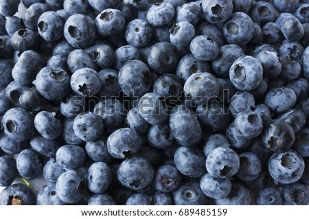 Fresh blueberry background. Texture blueberry berries close up #689485159